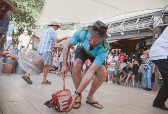 Toad Races Straddie Pub. Julie Sisco.